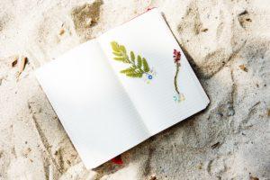 フランス語,手帳,表記